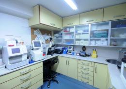 Centre Veteralia Verneda Veterinari Barcelona