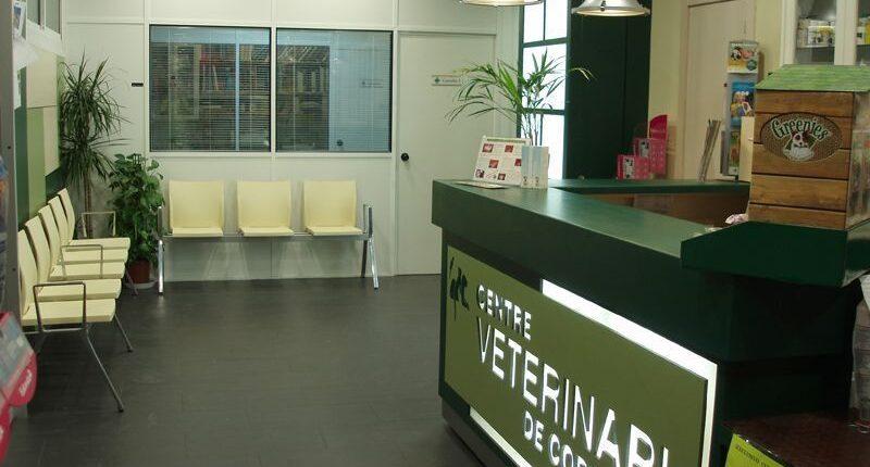 C.V. Cornellà - Centre Associat Veteralia