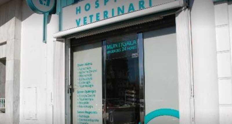 Hospital Veterinari Montigalà - Centre Associat a Veteralia